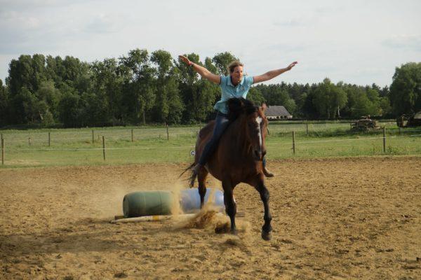 Dorien Lambrechts paardentraining coach amazone