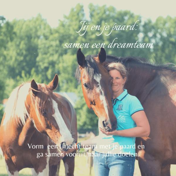 jij en je paard dreamteam paardentraining coaching