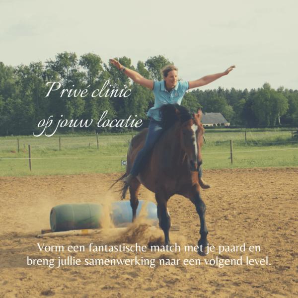 Prive clinic op jouw locatie - leiderschap communicatie paard veiligheid vertrouwen respect