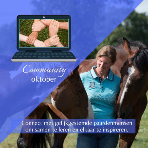 dorien lambrechts - paardentraining - coaching en begeleiding - verbinding - groep - gelijkgestemde paardenmensen